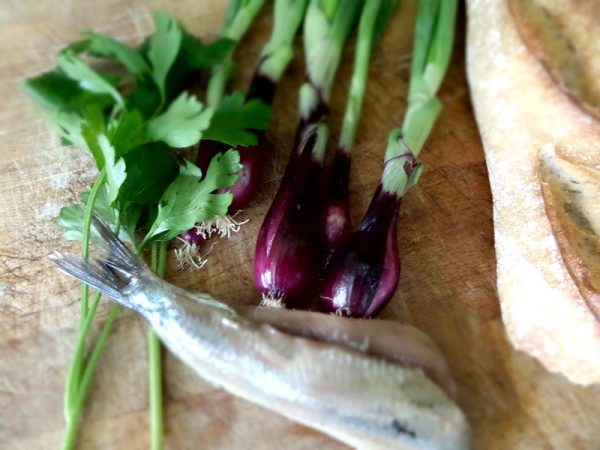 Matjesbrötchen mit Zwiebel und Petersilie